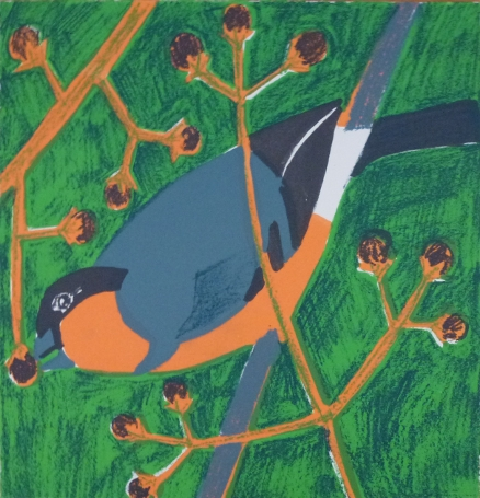 Bullfinch Screen print