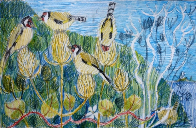 goldfinches and wren drawing