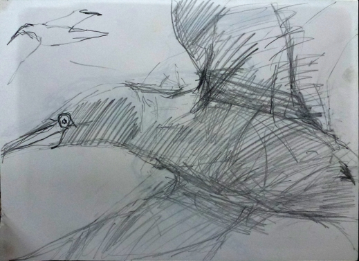 flying gannet small