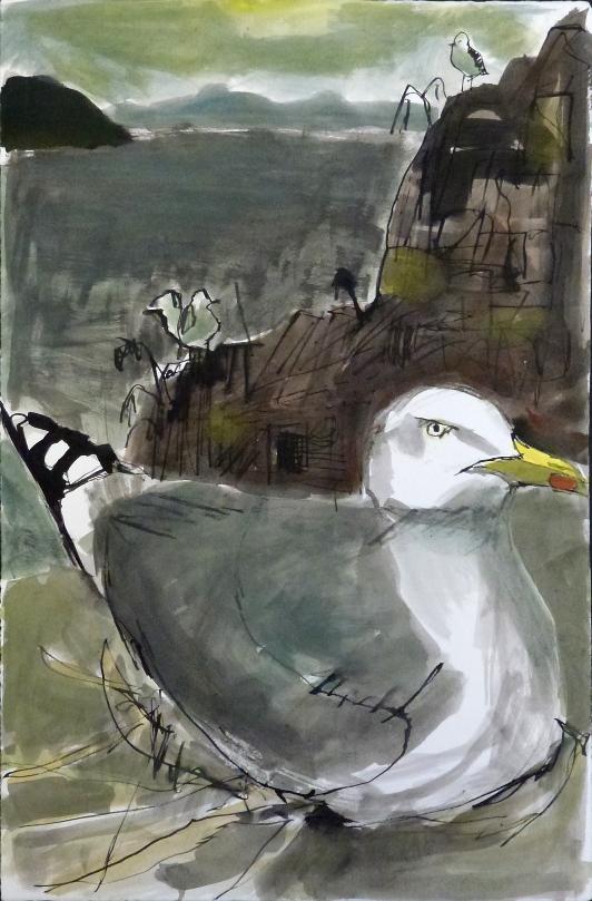 herring gull on nest small