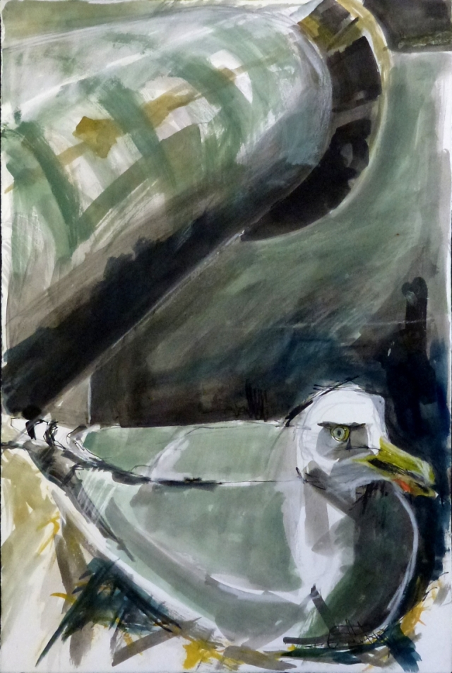 scaled gull
