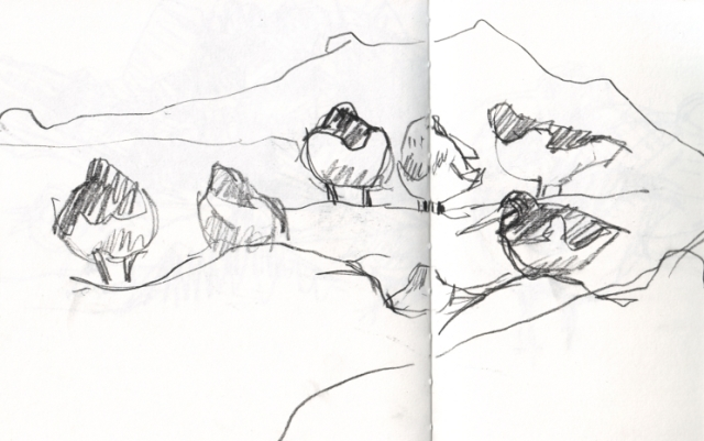 Group of waders sketch