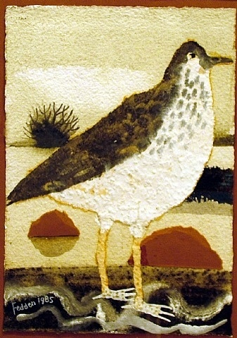 mary fedden bird