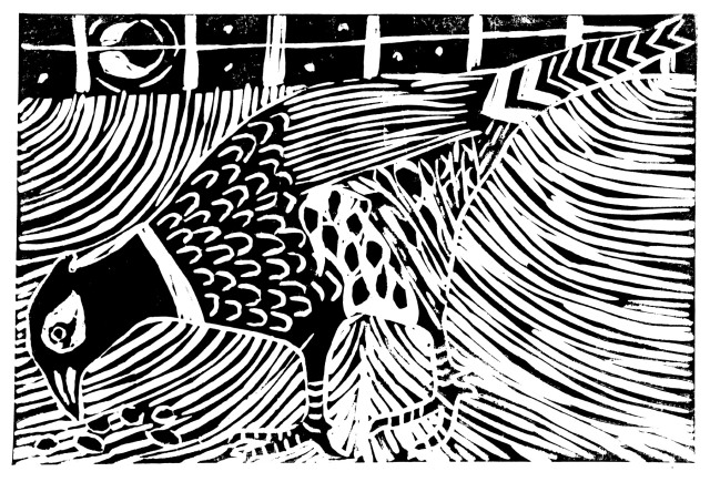 Image: Moonlit Pheasant lino cut Pheasant  You said you would kill it this morning. Do not kill it. It startles me still, The jut of that odd, dark head, pacing Through the uncut grass on the elm's hill. It is something to own a pheasant, Or just to be visited at all. I am not mystical: it isn't As if I thought it had a spirit. It is simply in its element. That gives it a kingliness, a right. The print of its big foot last winter, The trail-track, on the snow in our court The wonder of it, in that pallor, Through crosshatch of sparrow and starling. Is it its rareness, then? It is rare. But a dozen would be worth having, A hundred, on that hill-green and red, Crossing and recrossing: a fine thing! It is such a good shape, so vivid. It's a little cornucopia. It unclaps, brown as a leaf, and loud, Settles in the elm, and is easy. It was sunning in the narcissi. I trespass stupidly. Let be, let be. Sylvia Plath