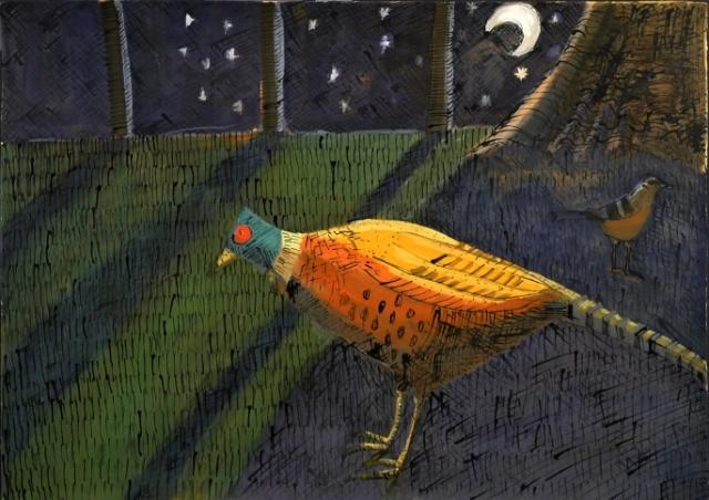 pheasant web