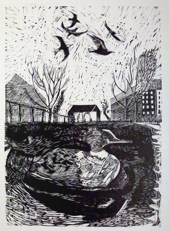 city goosander relief print small.JPG