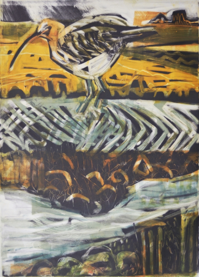 feeding curlew monotype small